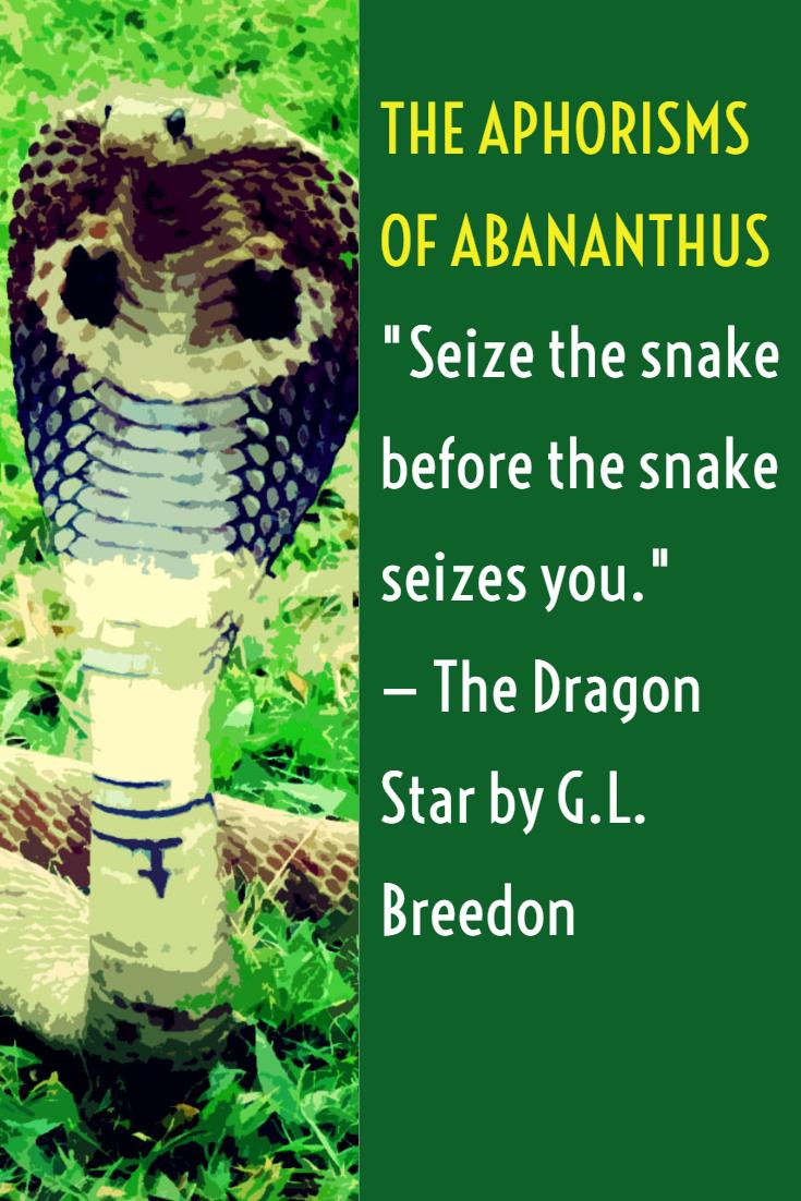 Abananthus Story Splash 6